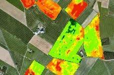Agriculture de précision – Suivi de la végétation