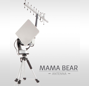 Antenne Mama bear